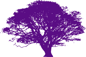 purple-tree-hi